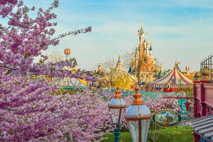 Disneyland Paris Cherry Blossoms
