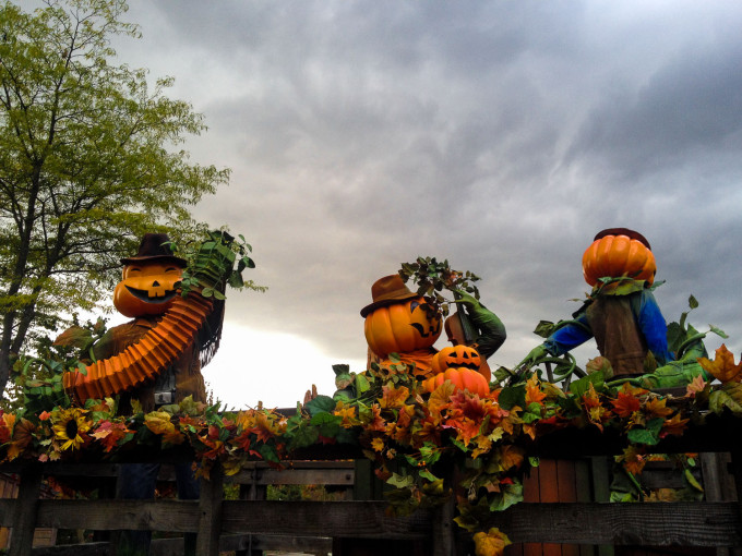 Pumpkin Scarecrows in Disneyland