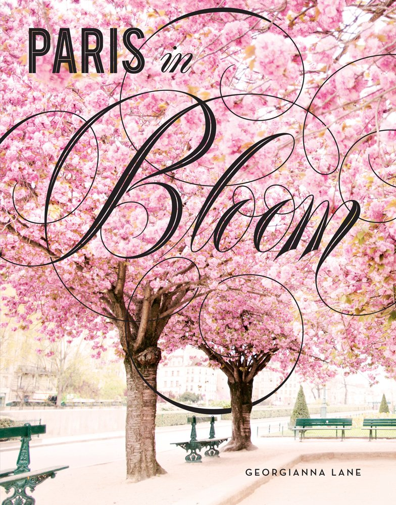 Paris in Bloom Cherry Blossoms by Georgianna Lane