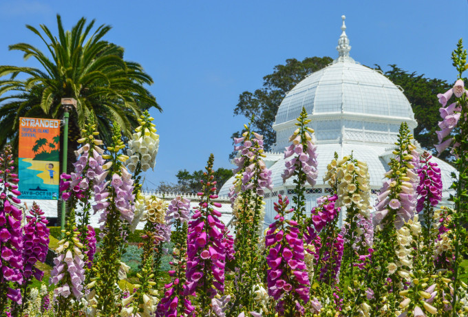 Conservatory of Flowers San Fran